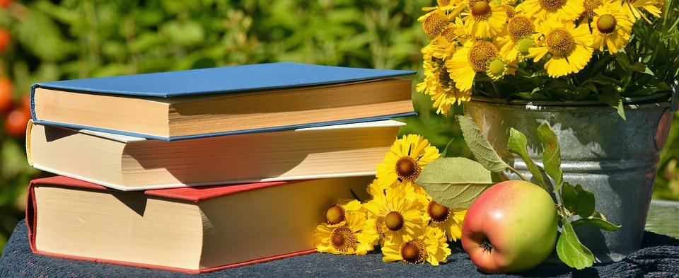 Literasi - Buku
