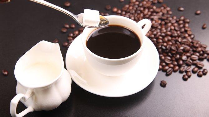Gula & Kafein