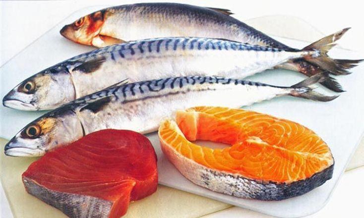 Ikan Tinggi Lemak - beaumonde.ge