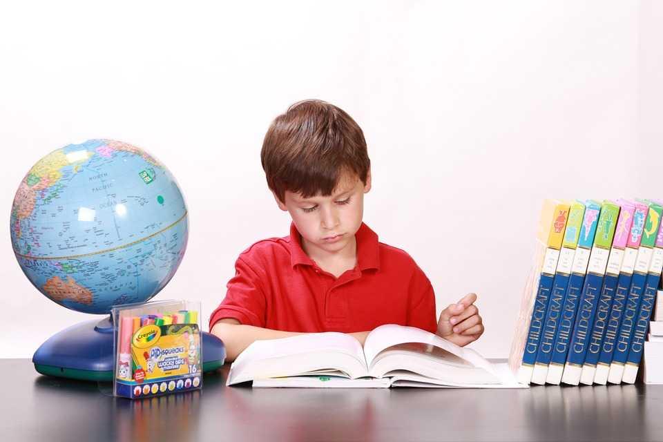 Anak Cinta Buku