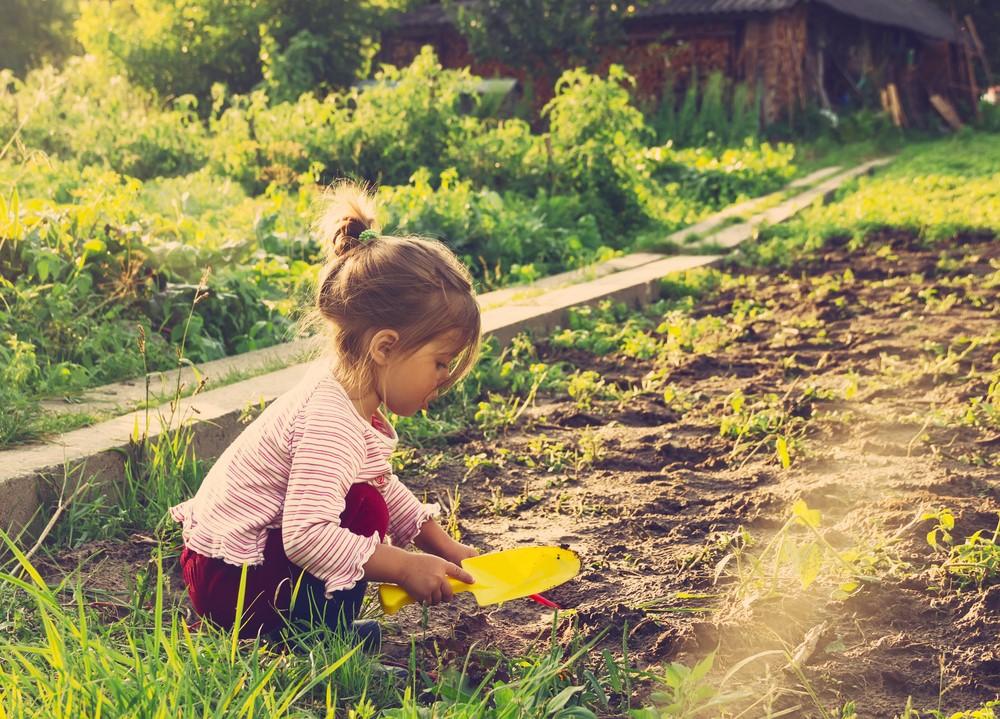 Ajak Anak Berkebun