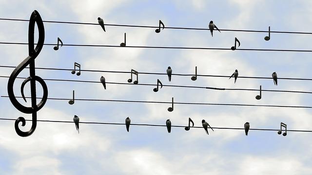Minat Pada Musik